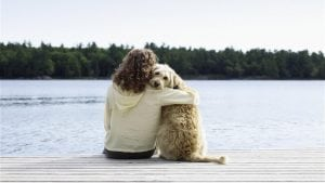 4 tips for keeping your pet safe this summer
