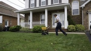 Fall maintenance tips for a lush green lawn next spring