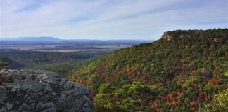 Take a road trip through Arkansas for the best fall foliage views